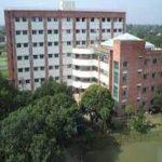 International Medical College